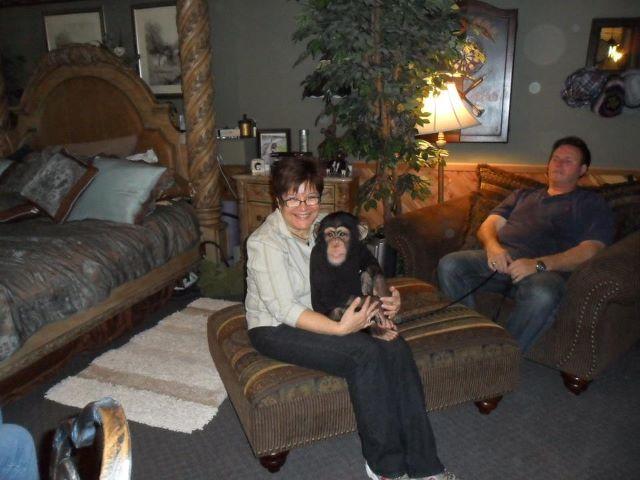 Monkeying Around Las Vegas Heals Heart