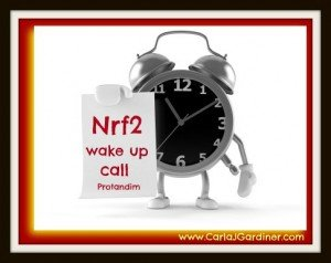 Nrf2 Wake Up Call 2