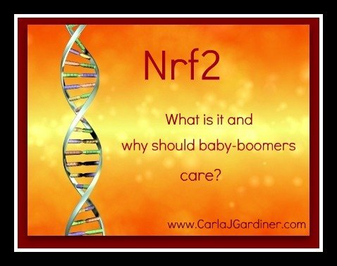 Nrf2 what is it
