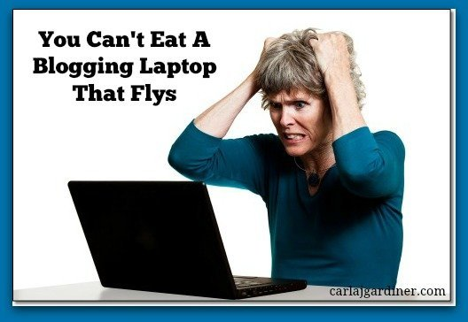 You Can't Eat A Blogging Laptop That Flys