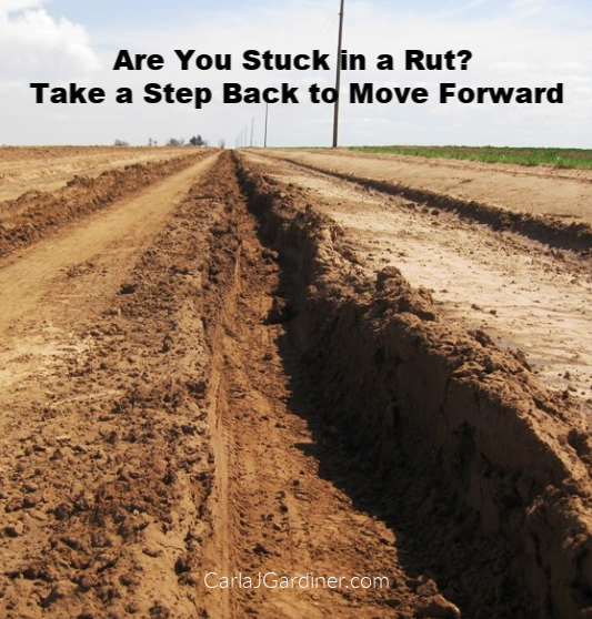 Are You Stuck in a Rut Take a Step Back to Move Forward